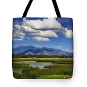 Marshall Lake Tote Bag