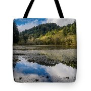 Marshall Pond In Autum Tote Bag
