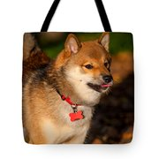 Marvel 2. Shiba Inu Breed Tote Bag
