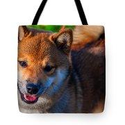Marvel. Shiba Inu Breed Tote Bag