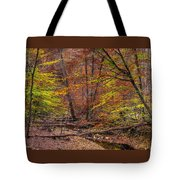 Maryland Country Roads - Autumn Colorfest No. 8 - Catoctin Mountains Frederick County Md Tote Bag