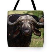 Masai Mara Buffalo Tote Bag