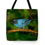 Masked Flower-piercer Tote Bag