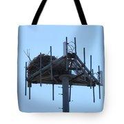 Massaive Nesting Tote Bag