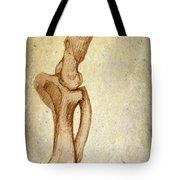 Mastodon Leg Bones Tote Bag