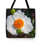 Matilija Poppy Buds And Bloom Tote Bag