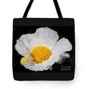 Matilijia Poppy 2 Tote Bag