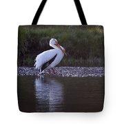 Mature Pelican   #9337 Tote Bag