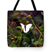 Maui Butterfly Tote Bag