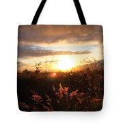 Maui Kulamalu Sunset Tote Bag