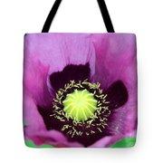 Mauve Poppy Tote Bag