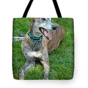 Maverick Tote Bag by Lisa Phillips