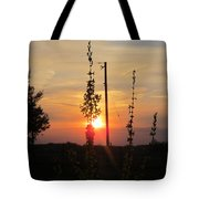 May 3 2013 Sunset Tote Bag