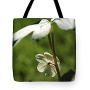 May Apple Flower Tote Bag