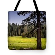 May I Intrude On Your Meadow Tote Bag