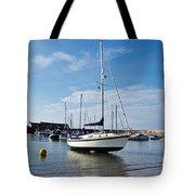 May Morning - Lyme Regis Tote Bag
