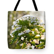 May Pear Blossoms Tote Bag