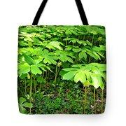 Mayapple Plants Tote Bag