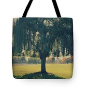 Maybe We'll Find It Someday Tote Bag