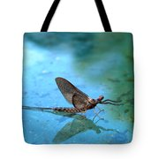 Mayfly Reflected Tote Bag