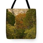 Mckittrick Canyon Trail Tote Bag