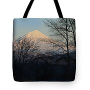 Mclaughlin Late Winter Day Tote Bag