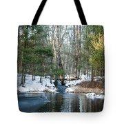 Meadow Brook Pond 1 Tote Bag