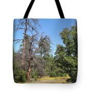 Meadow Over Oak Creek Canyon  Tote Bag