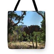 Meadow Zion Park Tote Bag
