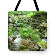 Meandering Stream Tote Bag