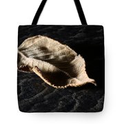 Meanwhile The World Goes On Tote Bag