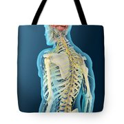 Medical Illustration Of Human Brain Tote Bag