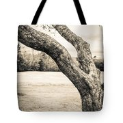 Meet Me Under The Old Apple Tree Tote Bag