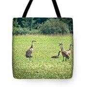 Meeting Of The Cranes Tote Bag