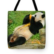 Mei Xiang Chowing On Frozen Treat Tote Bag
