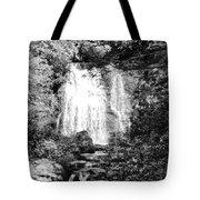 Meigs Falls Smoky Mountains Bw Tote Bag