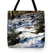 Melting Snow In A Forest In Late Winter Tote Bag