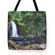 Memorial Falls Logjam Tote Bag