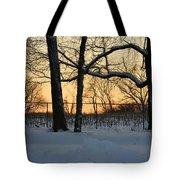 Memories Of Winter Tote Bag