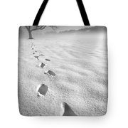Memory Traces Of A Cold Day Tote Bag