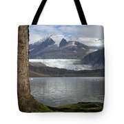 Mendenhall Glacier In Late Fall Tote Bag
