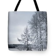 Mendon Pond Trees Tote Bag