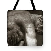 Menelaus Supporting The Body Of Patroclus Tote Bag