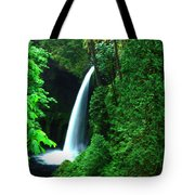 Menteko Falls  Tote Bag