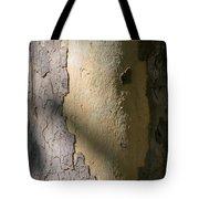 Meridian Tote Bag