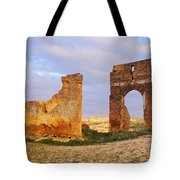 Merinid Tombs Ruins In Fes In Morocco Tote Bag