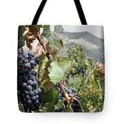 Merlot Ready Tote Bag