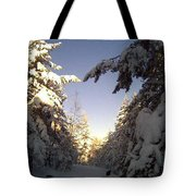 I Wish You A Merry Christmas From My Winter Wonderland  Tote Bag