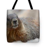 Merry Marmot Tote Bag