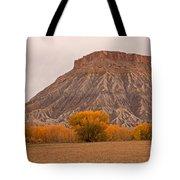 Mesa Tote Bag